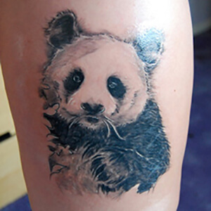 4817aa952 Realistic Panda Bear Tattoo. Photo: My Tattoo Land