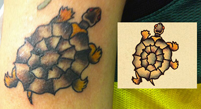 Sailor Jerry Turtle Tattoo