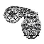 Patterned Owl Tattoo Idea